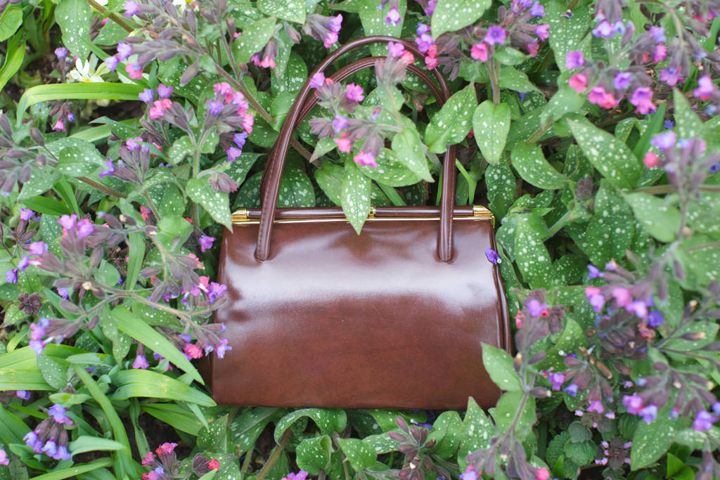 50s Brown Vintage Clasp Bag 038 mini Green in the Pavilion Gardens
